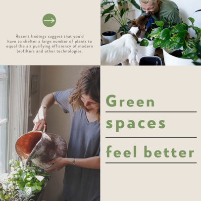 Instagram Post Template With an Indoor Gardening Theme 4141a-el1