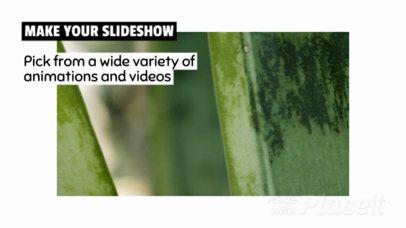 Minimalist Slideshow Video Maker 446