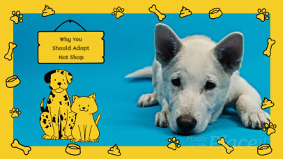Animated Slideshow Maker for Pet Adoption Awareness 1774