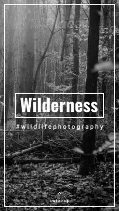 Minimalist Instagram Story Video Creator for a Photographer 905-el1